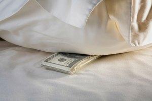 fat-chance-pillow-money-1040cs010612